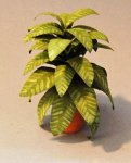 Aglaonema in a Terra Cotta Pot One-inch scale
