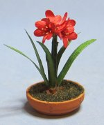 Amaryllis in a Terra Cotta Bulb Pot One-inch scale