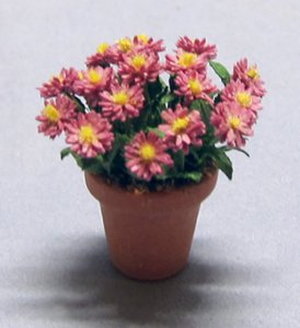 Aster in a Terra Cotta Pot Half-inch scale