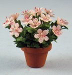 Azalea in a Terra Cotta Pot Half-inch scale