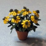 Black-eyed Susan in a Terra Cotta Pot Quarter-inch scale