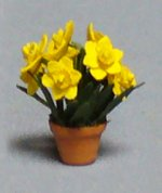 Daffodil in a Terra Cotta Pot Quarter-inch scale