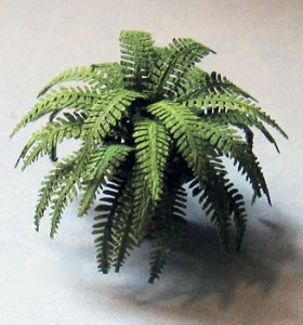 Boston Fern in a Terra Cotta Pot Half-inch scale