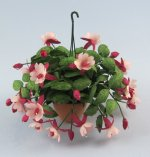 Fuchsia in a Terra Cotta Hanging Pot One-inch scale
