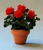 Geraniums in a Terra Cotta Pot Half-inch scale
