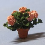 Geraniums in a Terra Cotta Pot Quarter-inch scale