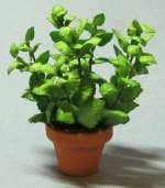 Herb-Mint Plant in a Terra Cotta Pot One-inch scale