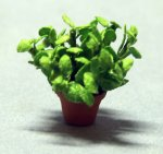 Herb-Mint Plant in a Terra Cotta Pot Quarter-inch scale
