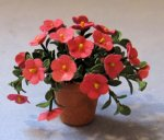 Petunia in a Terra Cotta Pot Half-inch scale