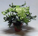 Lacy Philodendron in a Terra Cotta Pot One-inch scale