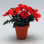 Poppies in a Terra Cotta Pot Half-inch scale