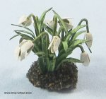 Snow Drop One-inch scale