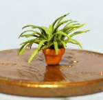 Spider Plant in a Terra Cotta Pot 1/120th scale
