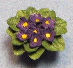 African Violet in a Terra Cotta Pot Quarter-inch scale