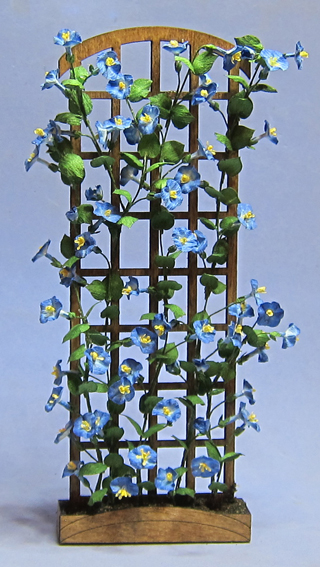 morning glory on trellis