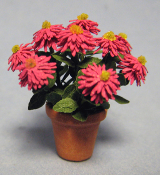 Zinnia, Cactus Flowered in a Terra Cotta Pot Half-inch scale ... on aster plants, pentas plants, dahlia plants, verbena plants, rose plants, lantana plants, hibiscus plants, tulip plants, calendula plants, geranium plants, honeysuckle plants, salvia plants, nasturtium plants, yucca plants, garden plants, sweet pea plants, cosmos plants, peruvian lily plants, dill plants, begonia plants,